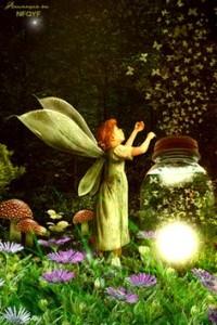 whimsy faery