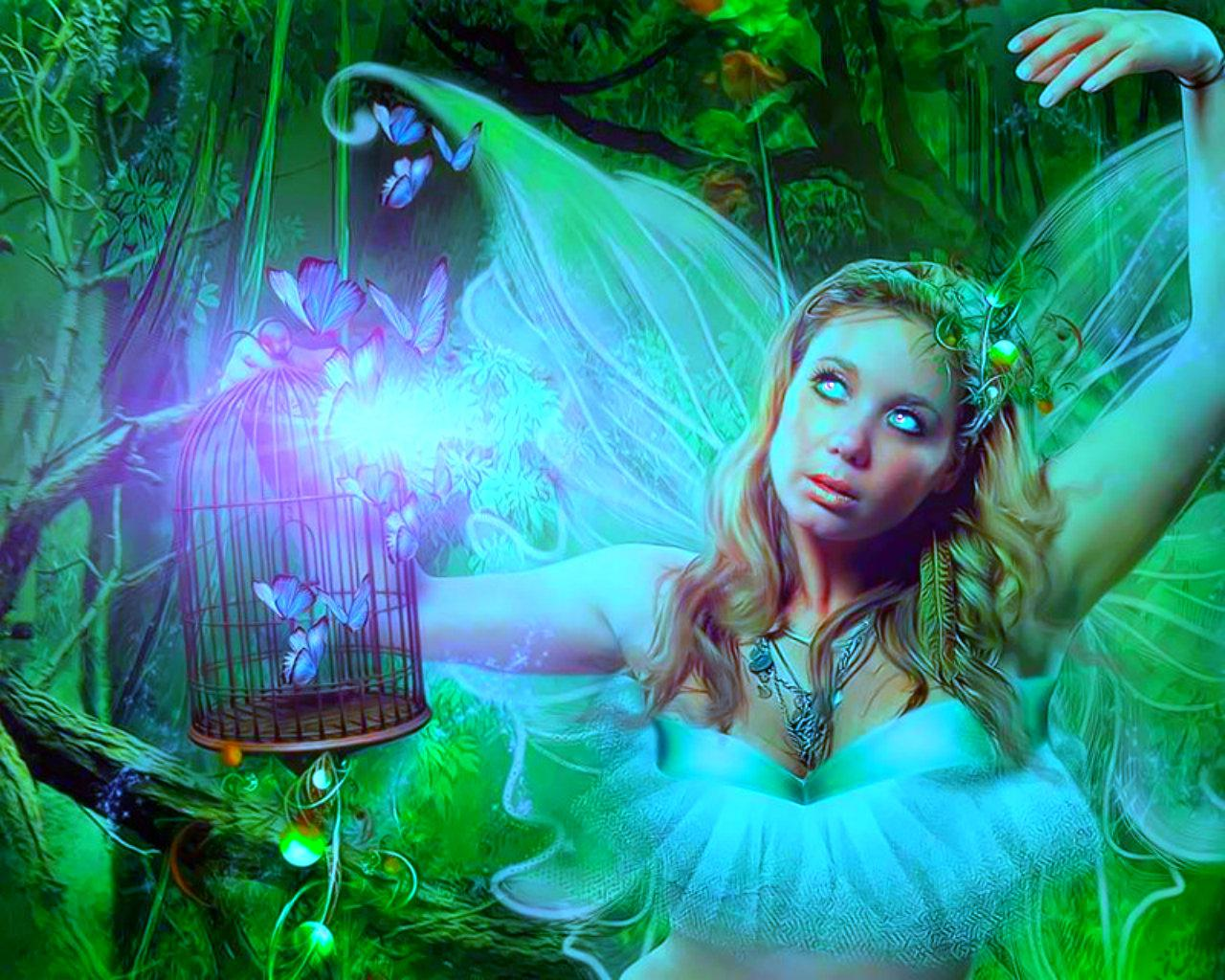 forests_fairy-1539417