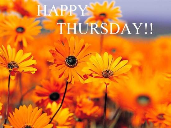 Thursday-orange-flowers