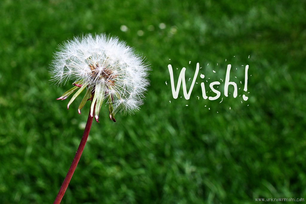 Wednesday-Wishes-